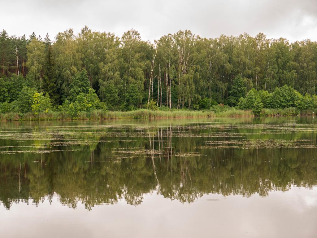 Jezioro Szczepankowskie nie jest duże