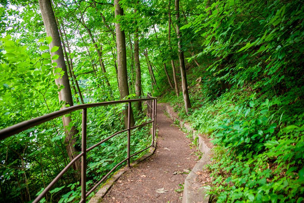 Ścieżka turystyczna zabezpieczona barierką