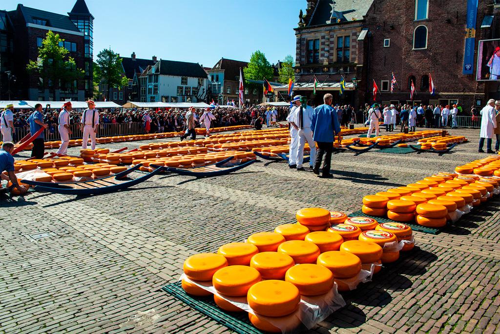 Targ serowy ma miejsce na placu na starym mieście