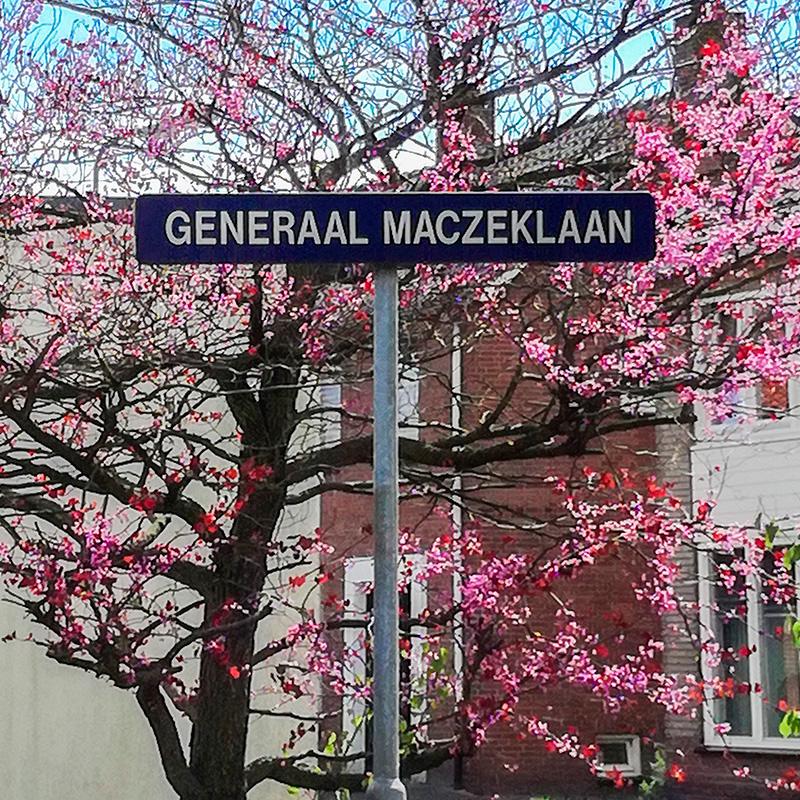 Tablica z nazwą ulicy Generaal Maczeklaan