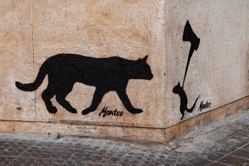 Co zobaczyć w Walencji? Ciekawe graffiti :)