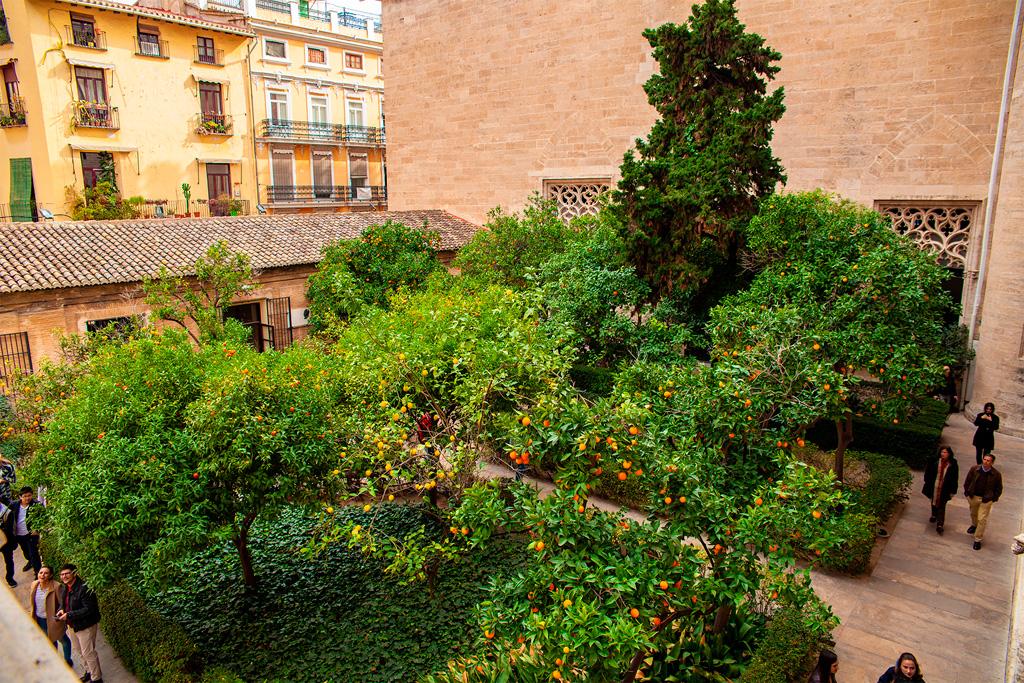 La Lonja de la Seda, widok na dziedziniec pełen drzewek pomarańczowych i cytrynowych