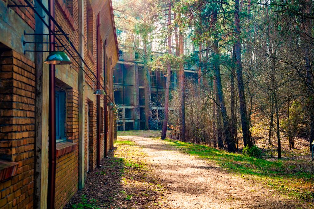 Budynki malowniczo położone w lesie