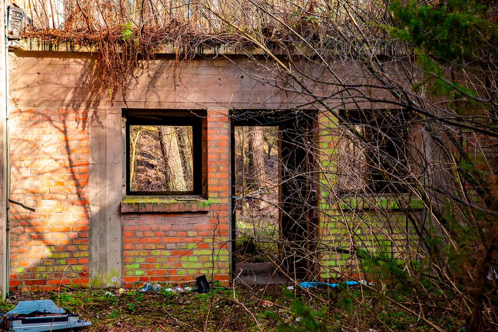 Pozbawiony okien niski budynek wśród zieleni
