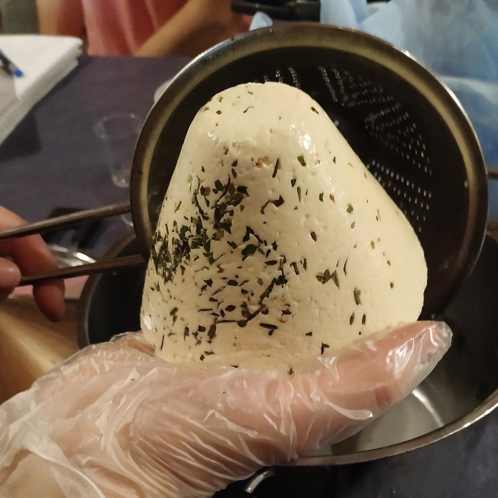 Warsztaty serowarstwa – stożkowaty świeży ser żuławski