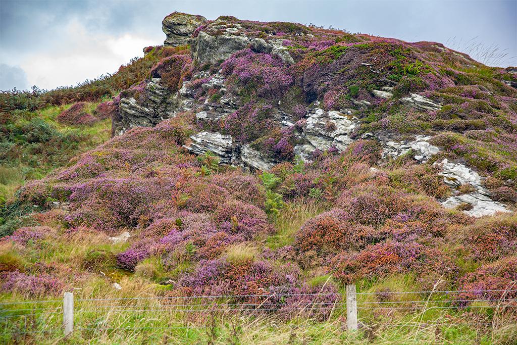 Krajobrazy Islay