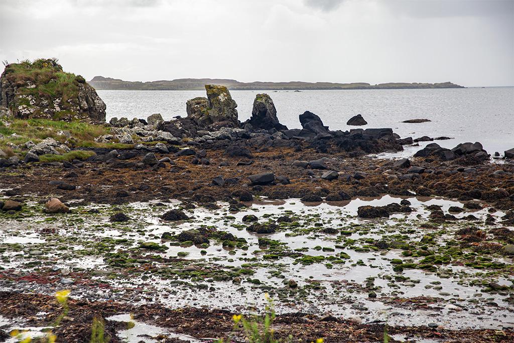 Skalne rumowisko na plaży na południowym brzegu Islay