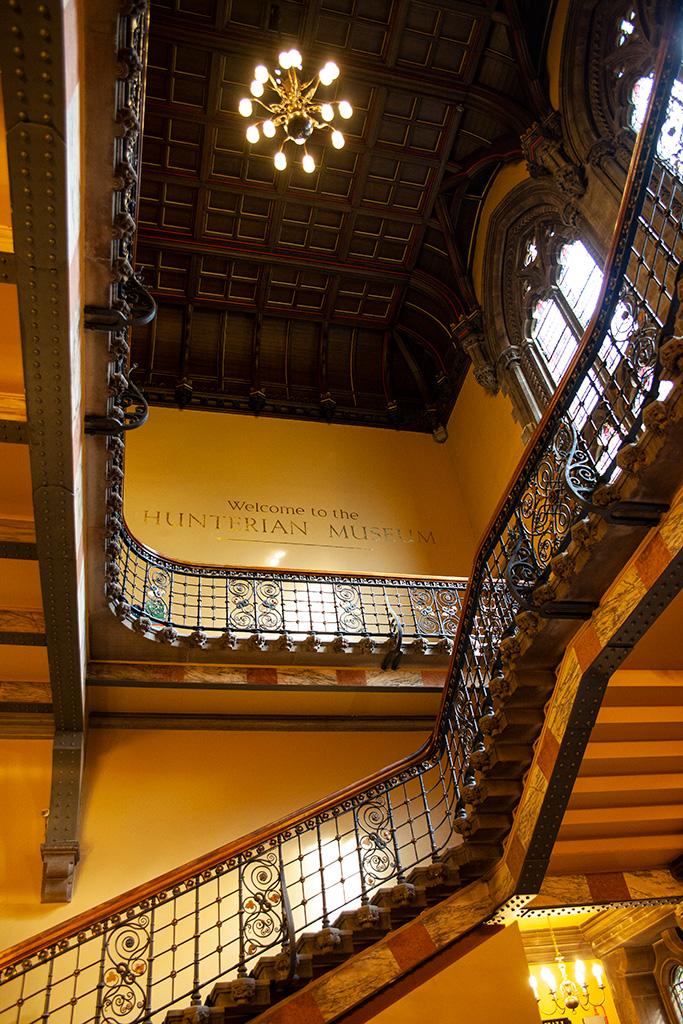 Co zobaczyć w Glasgow? Hunterian Museum - za darmo!