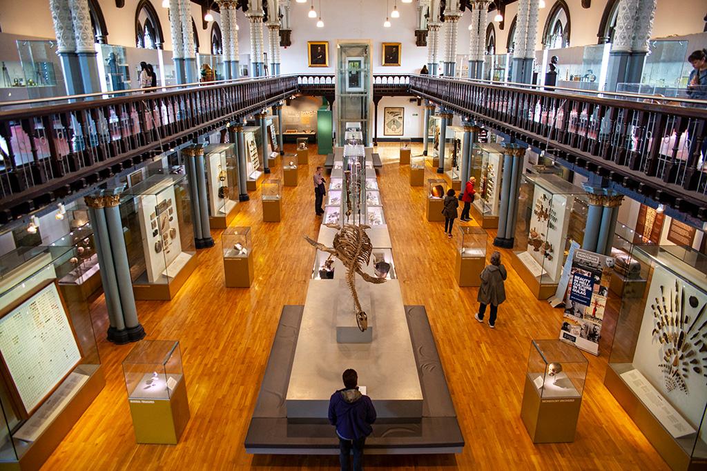 Co zobaczyć w Glasgow? Hunterian Museum