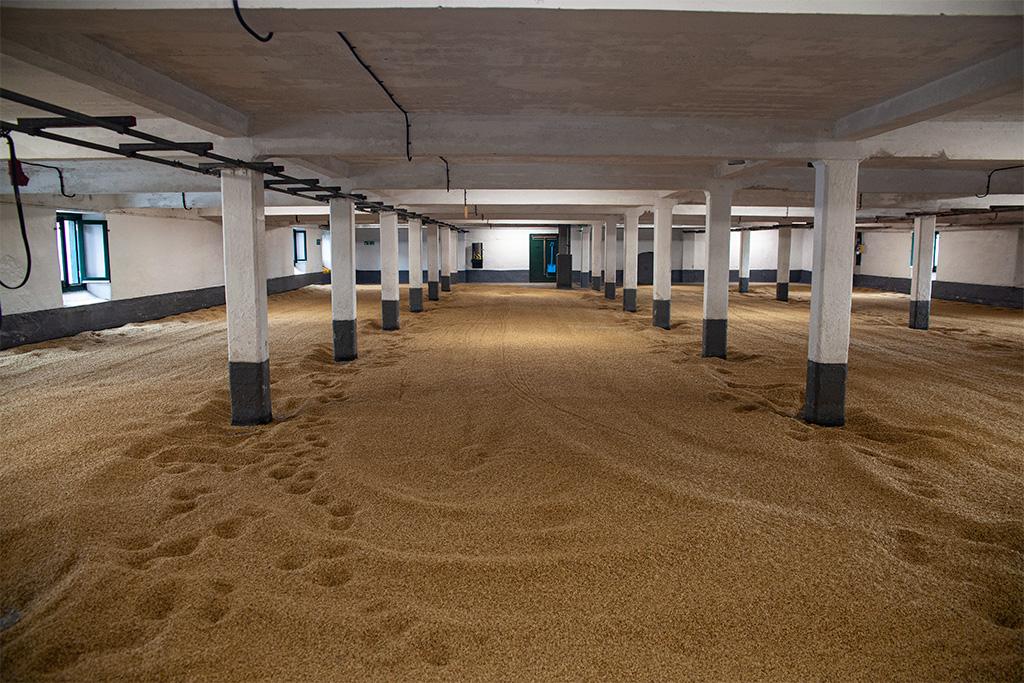 Laphroaig, zwiedzanie malting floor