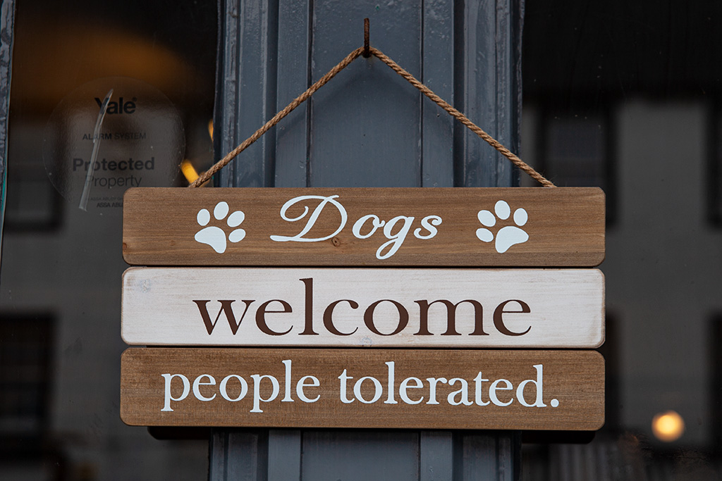 """Tabliczka na drzwiach. """"Dogs welcome. People Tolerated"""" ;)"""