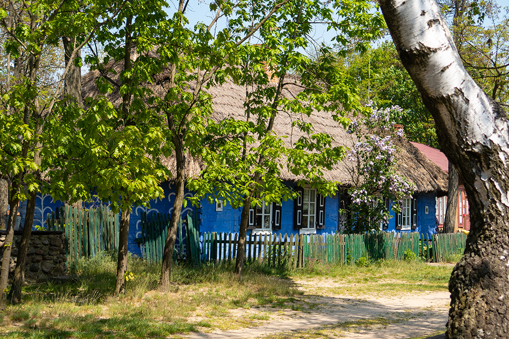 Skansen w Maurzycach –niebieskie chaty wśrod drzew