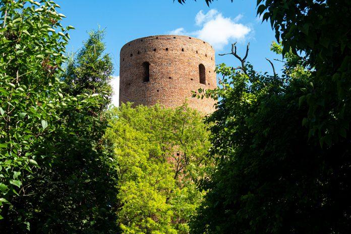 Zamek w Czersku ukryty jest w zaroślach :)