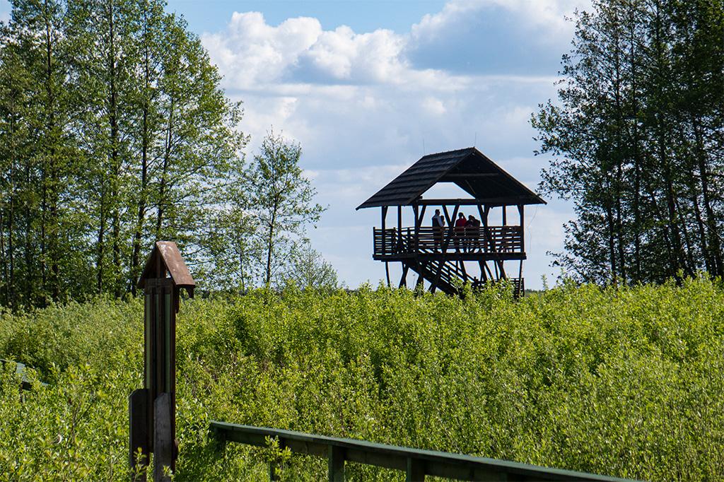 Bagno Całowanie - wieża widokowa