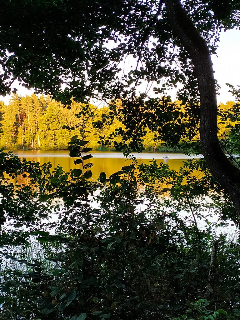 Spacer dookoła jeziora skutkuje takimi widokami :)