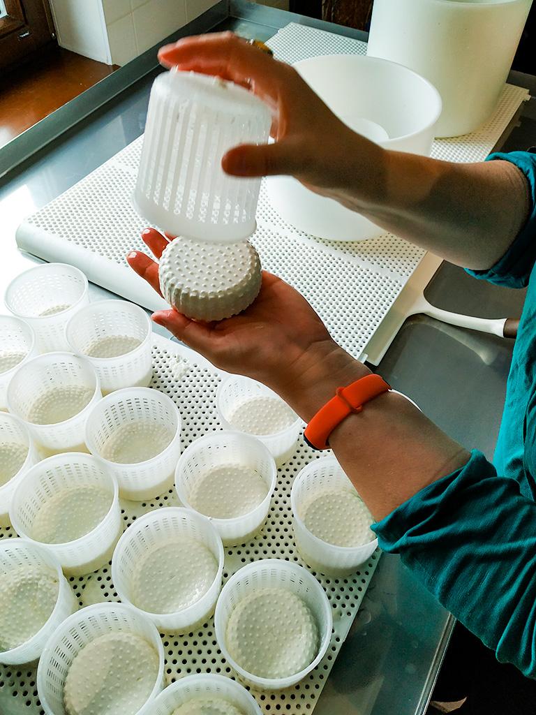 Kurs serowarstwa – sammi robimy sery