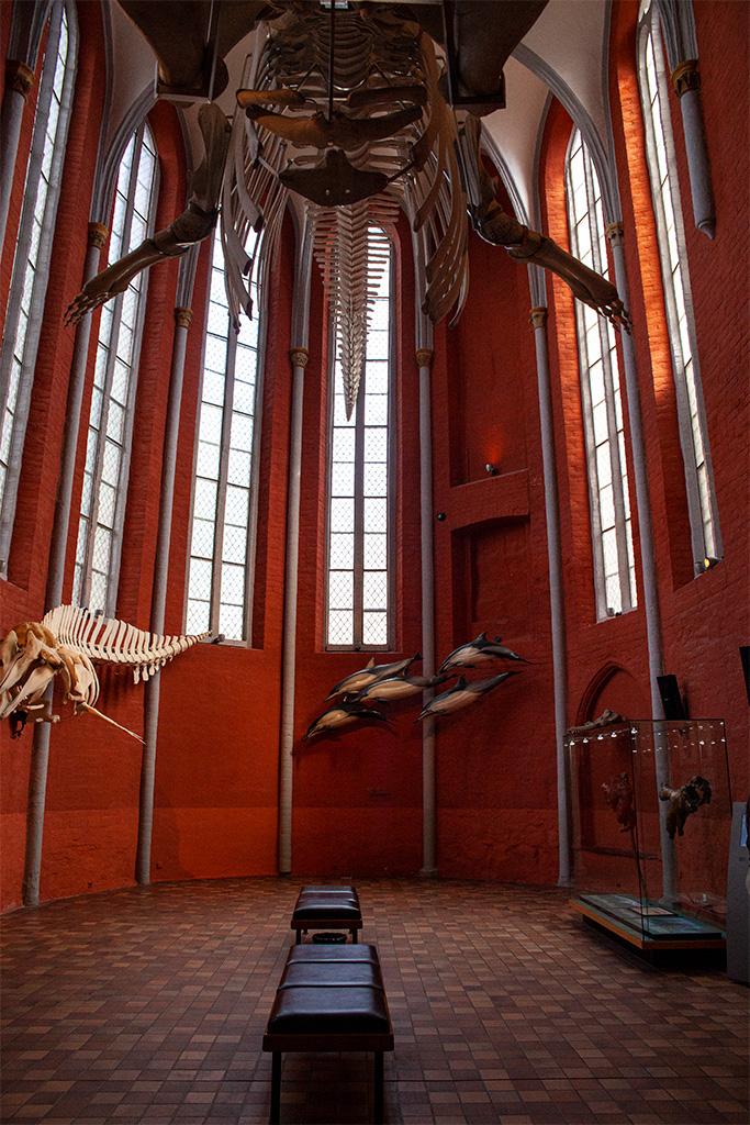 Stralsund – pokościelne wnętrze Muzeum Morskiego