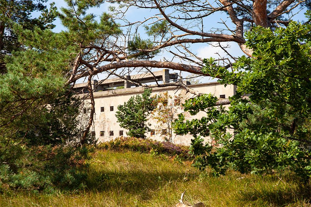 Prora –ruiny w lesie