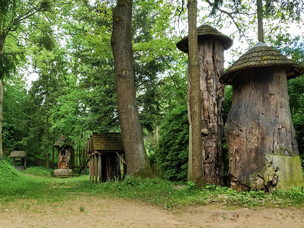Po prawej – barcie wydrążone w pniach drzew