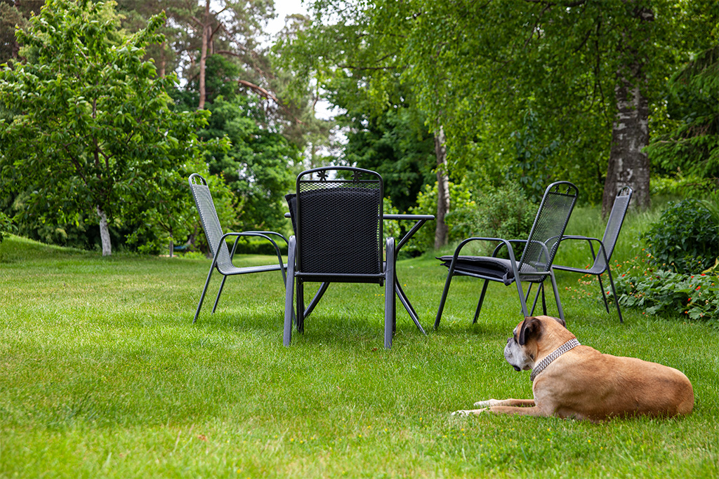 Zielone okiennice - stolik i krzesła wśród zieleni