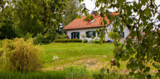 Zielone Okiennice od strony ogrodu