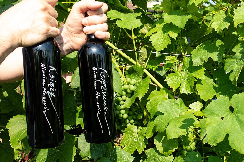 Wina czerwone z Winnicy Mazovia: Książe i Księżniczka