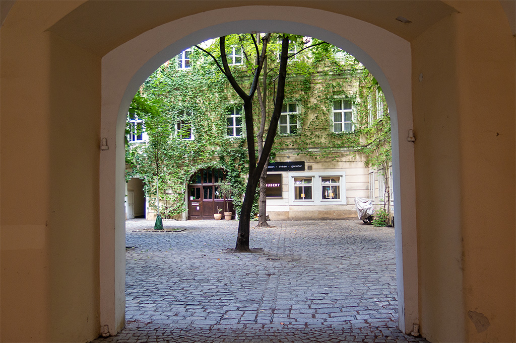 Wiedeń, city break – podwórko ze śnianami obrośniętymi bluszczem